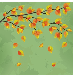 Vintage autumn background with tree branch vector