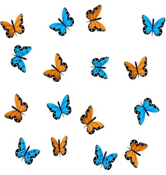 butterfly on white background vector image