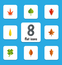 Flat icon leaves set of linden foliage leafage vector