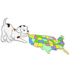 Small puppy playing with a map of the usa vector
