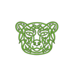 bear celtic knot vector image