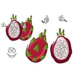 Ripe exotic pitaya or dragon fruit character vector image