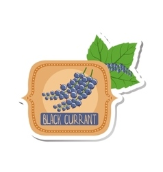 Black Currant Bright Color Jam Label Sticker vector image vector image