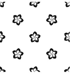 frangipani flower pattern seamless black vector image