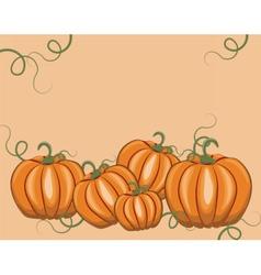 Fresh pumpkins on pale rose vector