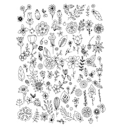 Set of black white doodle flowers leaves hand vector