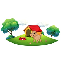A brown puppy playing ouside the dog house vector image vector image