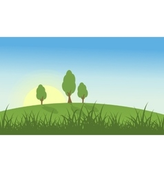 Hill with grass and tree landscape vector