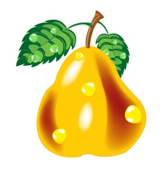 Ripe pear vector image