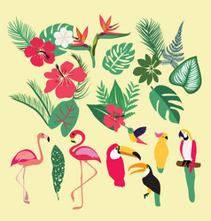 tropical set of tropical elements vector image vector image