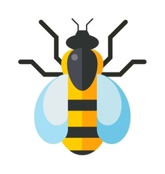 European western honey yellow bee nature wing fly vector image