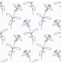 Hand drawn stevia branch outline seamless pattern vector