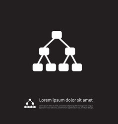 Isolated hierarchy icon team element can vector