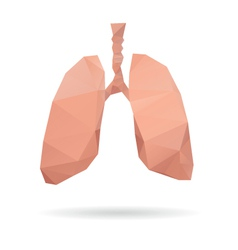 Lungs abstract isolated on a white backgrounds vector