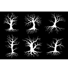 Dead old trees silhouettes with roots vector image
