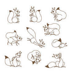 cartoon cute squirrel little funny squirrels vector image vector image