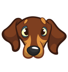 cartoon of dog vector image