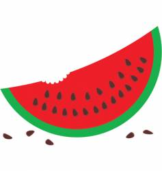 watermelon with seeds vector image