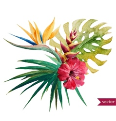 Nice tropical flowers vector