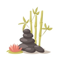 Stone flower and bamboo hygiene items for bath vector