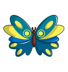 Butterfly papilio zagreus icon cartoon style vector