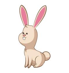 cute rabbit wildlife image vector image