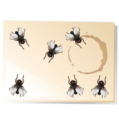 Many flies on the water stain vector image