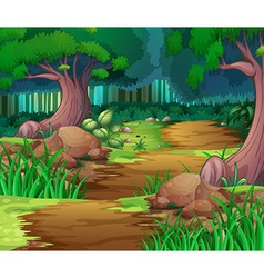 Nature scene with hiking track into the woods vector