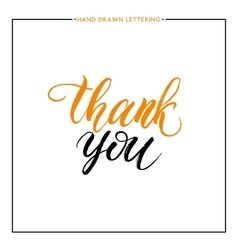 Thank you text isolated on white background vector