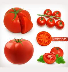 Tomato vegetable 3d icon set vector