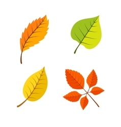 Yellow leaves set vector