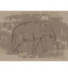 Elephant sketch on grunge background vector