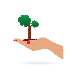 hand holding tree vector image vector image