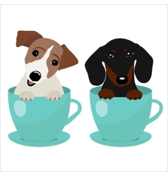 Jack Russell Terrier and Dachshund dog in blue vector image vector image