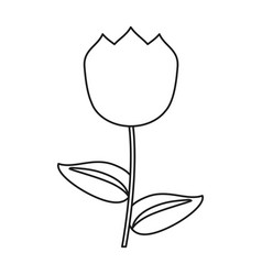 Tulip flower decoration easter thin line vector