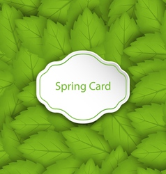 Spring card on seamless stylish pattern with green vector
