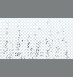 bubbles transparent underwater water vector image vector image