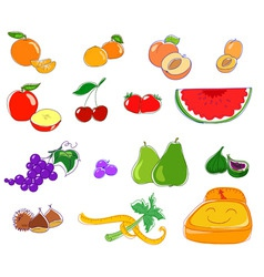 fruit icons vector image vector image