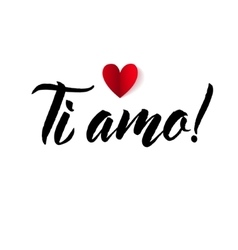 I love you valentines day italian black and red vector