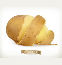 Vegetable potato peel spiral food vector