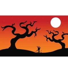 Halloween dry tree silhouette vector image