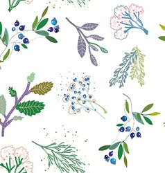 Herbal medicine plants seamless pattern vector image