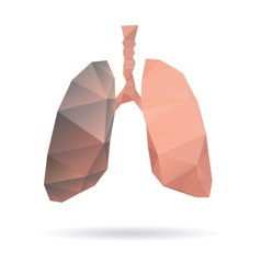 Lungs abstract isolated on a white backgrounds vector image