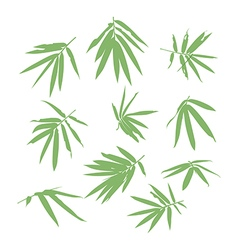 Bamboo leaf vector