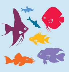 Colorful aquarium fish silhouettes set vector