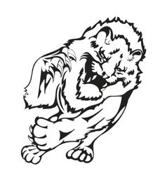 wild lion vector image vector image