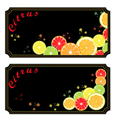 The ripe citrus vector