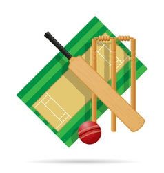 cricket field vector image