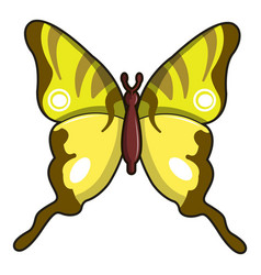 Iphiclides podalirius butterfly icon vector