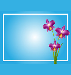border template with purple orchid vector image vector image